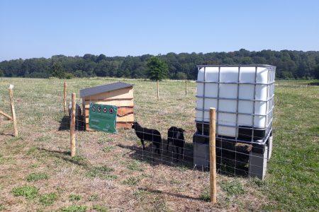 Abris en bois, abreuvoir et réserve d'eau mouton